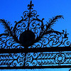 Backlit Gate