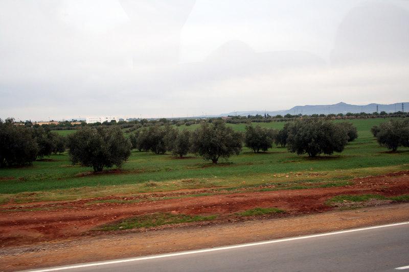 IMG_2606 Fez to Ifrane