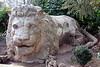 IMG_2612 Ifrane lion
