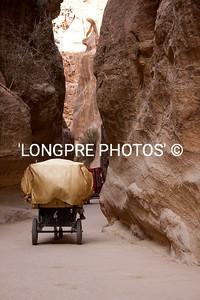 Carriage headed down pathway toward TREASURY.