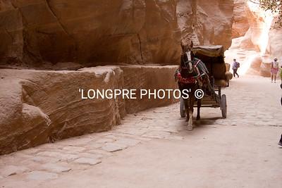 Horse carriage through gorage pathway to Treasury.