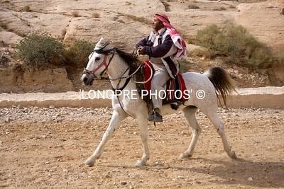 Arabian horse and rider, PETRA.