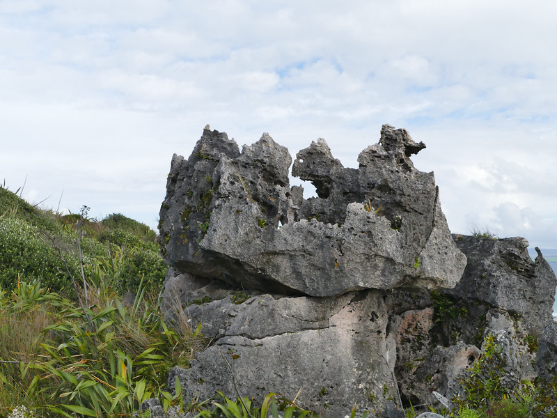 Lilly Rocks (limestone), probably wind erosion-sculpted