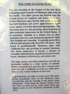 Info about the park itself.