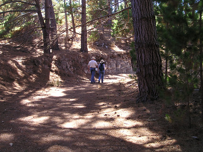 The nature trail was generally very wide and well-used, although we're not sure when or by whom, because we saw only two other parties the whole time we meandered through, taking our sweet time.
