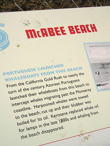 Info about McAbee Beach.