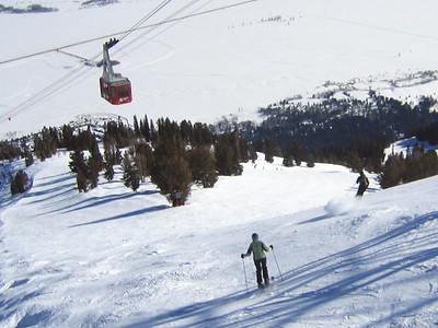 This is not my photo....To the right is my favorite run called Grand it's a double blue. It's also where I skied in 2' of power making my own tracks on the second day. Elevation about 9,800'