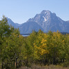 Tetons from Willow Flats