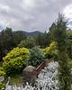 Andean Gardens