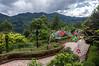 Andean Vista
