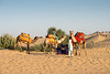 Camel safari at Sam desert, Jaisalmer, Rajasthan, India.
