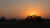 Sunset at the Sam Dunes, Jaisalmer, Rajasthan, India.