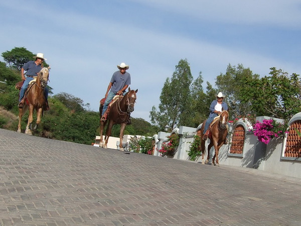 It isn't every day one has cowboys riding through their neighborhood