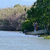 Jamaican Crabber on the Black River (A)