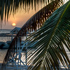 A view from behind a palm tree of the sun setting in Montego bay.