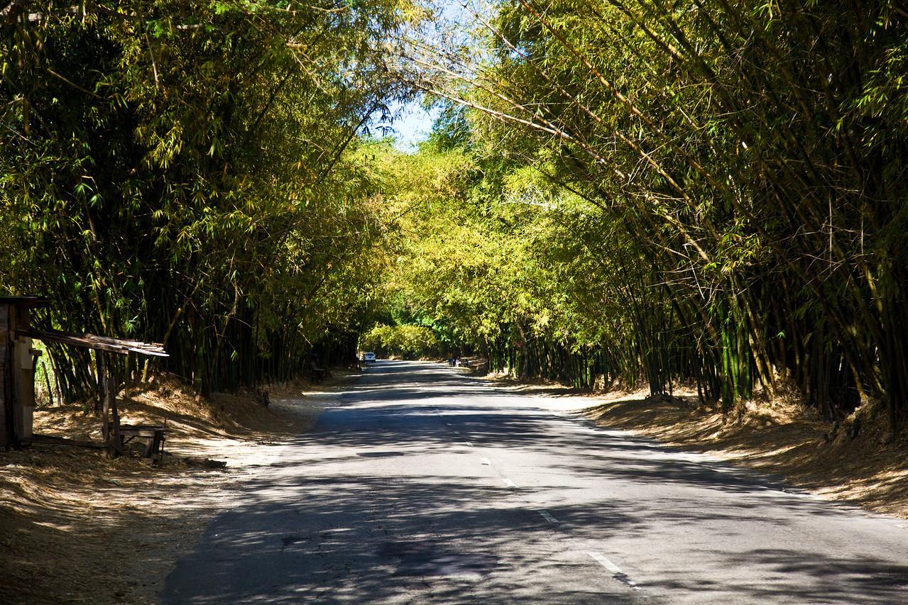 Jamaica2011-5043
