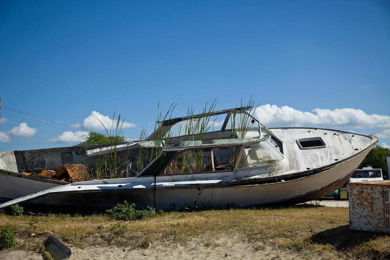 Jamaica2011-5065
