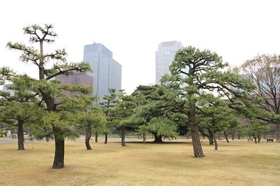 My camera settings were all wrong for these photos outside the Imperial Palace, so I deleted most of them...