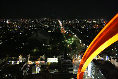 The view from the Kyoto Tower Hotel's tower...