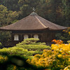 Kyoto's Silver Pavilion.