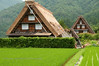 Ladders lean against a thatched roof being repaired in the World Heritage site Shirakawa, Japan.