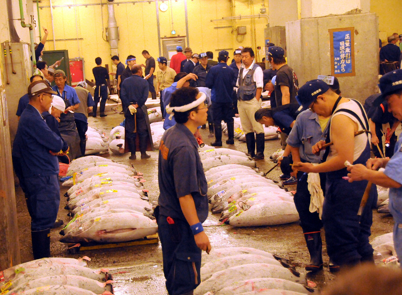 Tuna auction at Tsukiji Fish Market. The world's largest whole sale fish market open to the public from 5:00 a.m. to 6:30 a.m.  Great place to go while recovering from jet lag of a 13 hour time difference.