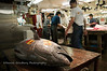 A fish sits on a table at the Tsukigi Fish Market in Tokyo, Japan.