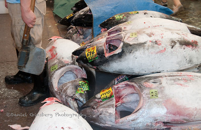 A man stands, knife in hand, in front of tuna (maguro) just prepared at the Tsukiji Fish Market in Tokyo, Japan.