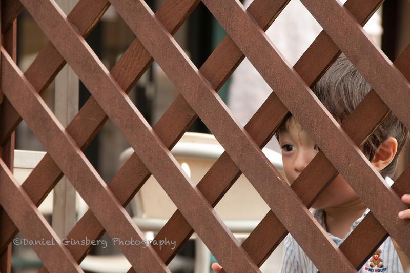 A young boy peers through a lattice wood fence in Kichiogi, Japan.
