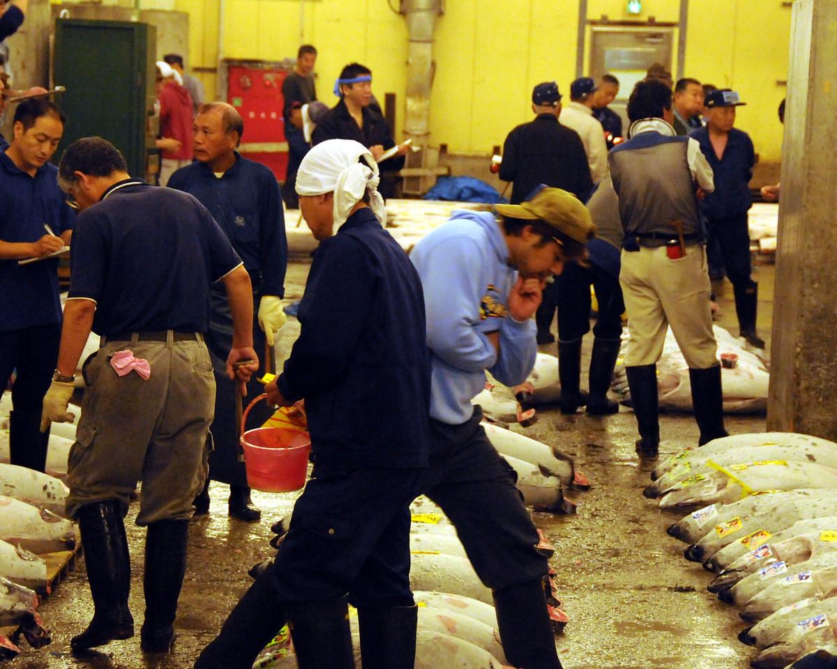 Tokyo - Tsukiji fish auction