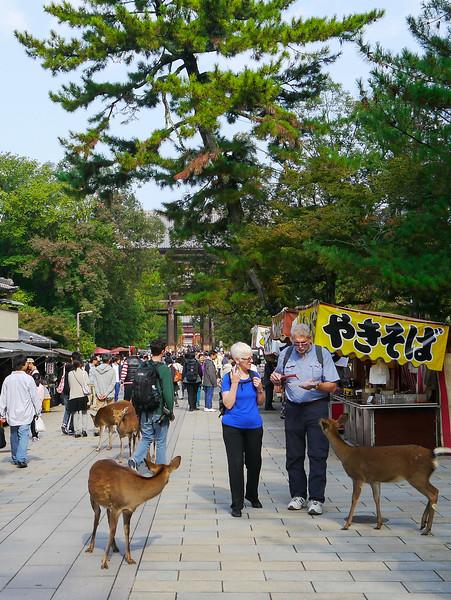 Near Todai-ji