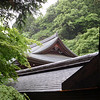 Day 5: Kyoto - you know we can't get enough of these Asian rooftops, especially when they're nestled among the trees.