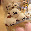 Day 4: Kyoto - look Heidee! Baby seals with moustaches!