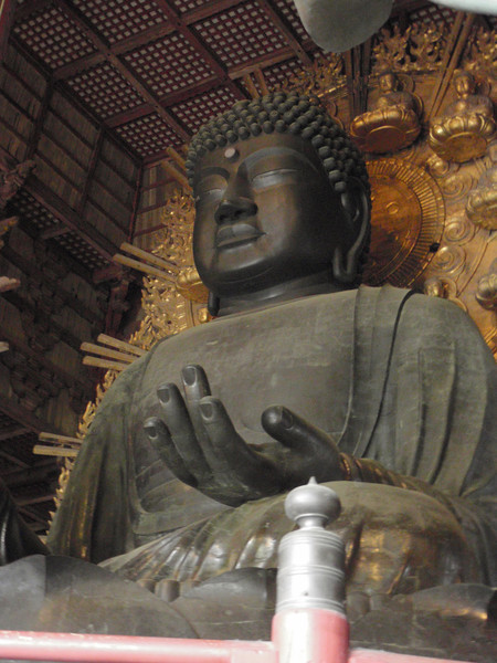 Day 3: Nara - the Buddha at Nara was constructed at a time when the emperor was convinced that the way to bring people closer to the divine was to have them contribute to this great shrine.