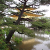 Day 5: Kyoto - our long-time readers are familiar with our numerous attempts to get artsy with some of our photographs. Here's one. The gold on Kinkaku-ji is gold leaf, not paint.