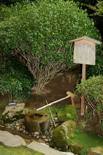 Garden, Ryoanji Temple, Kyoto