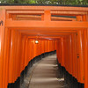 Day 3: Kyoto - thousands--literally, thousands--of gates (known as Torii in Japanese) line the paths of the grounds at Fushimi-Inari. You see, being the god of rice (which is big business in Japan), Inari became known as the patron of business. So in order to win Inari's good favor (and thus ensure financial success), businesses began paying to erect gates on the grounds of his temple. There's a good mile and a half of paths meandering up and down and through these beautiful woods, and most (but not quite all) of them are lined with these Torii, placed so close together they're almost touching. They're so thick that (combined with the thick canopy of trees overhead) even though it was raining while we were there, we didn't feel a drop.