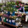 Cut flowers, Ohmicho Market, Kanazawa