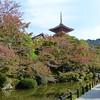 Foliage at Kiyomizu-Dera, Kyoto