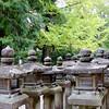 Stone Lanterns, Kasuga Taisha Shrine, Nara