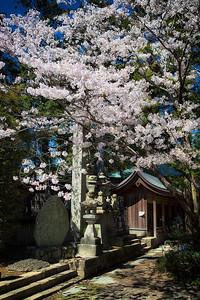 Temple 1 (on 88 temple pilgrimage) in Takashima