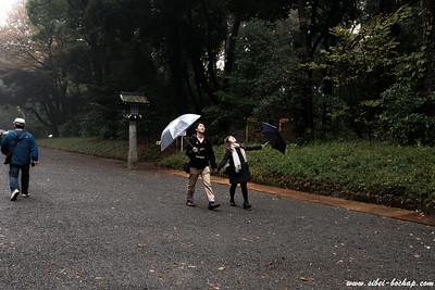 rain stop liaoz?