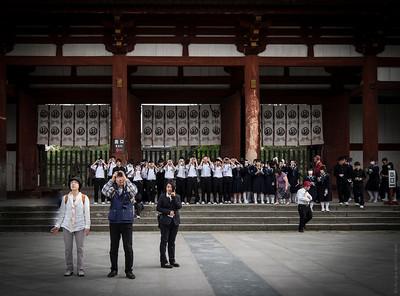 Japanese Harmony and Discipline...