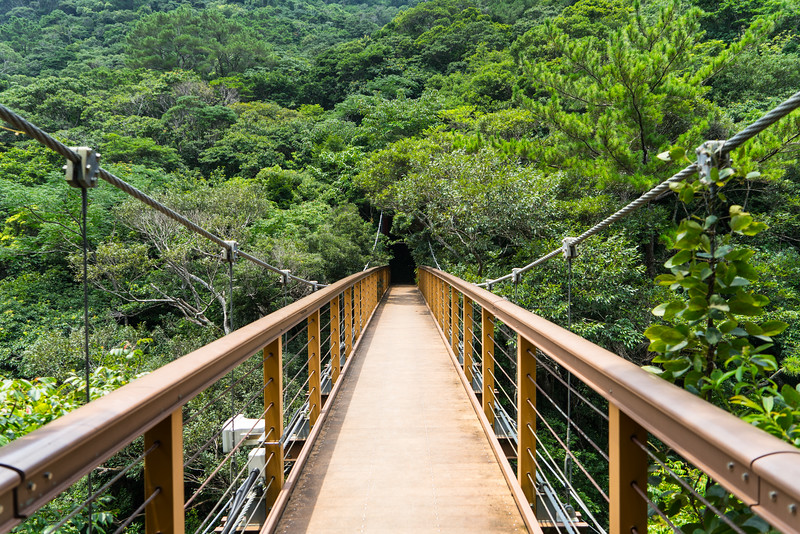 A bridge to the Hiki Waterfall