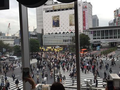 Shibuya Crossing viewed from 2nd Floor of Starbucks, Tokyo