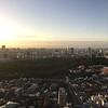 View of Yoyogi Park from Park Hyatt Tokyo Room