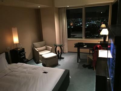 Park Hyatt Tokyo (47th Floor)