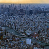 A View from the Tokyo Skytree