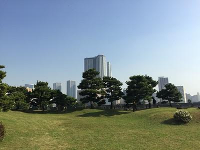 View from Hamarikyu Gardens, Tokyo