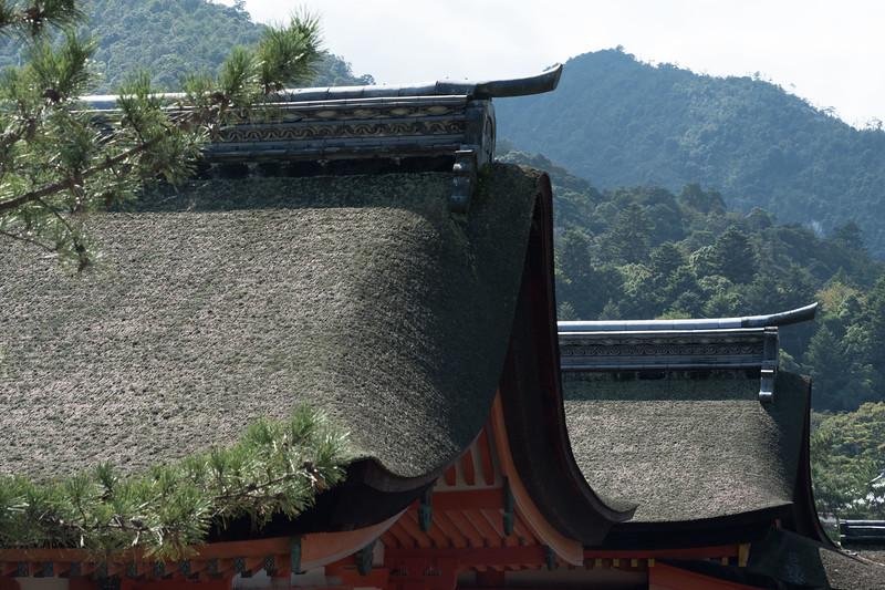 Miyajima temple roofs